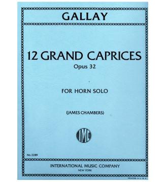 12 Grand Caprices