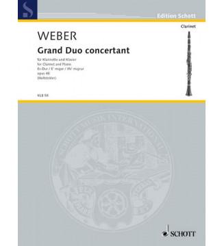 Grand duo concertant op 48