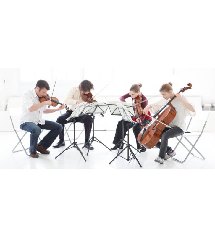 Musica da camera - Ensemble strumentali